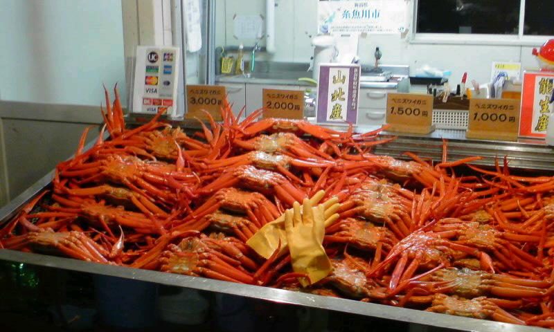 今夜は蟹を食べます